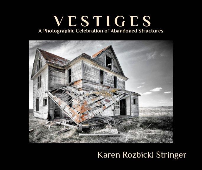 View Vestiges by Karen Rozbicki Stringer