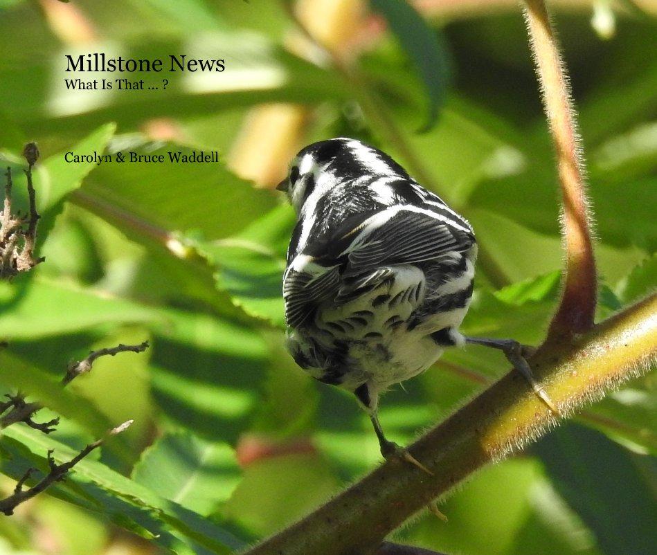 Bekijk Millstone News What Is That ... ? op Carolyn & Bruce Waddell