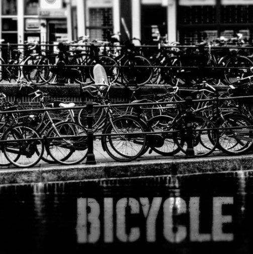 Bekijk Bicycle op Senia Ferrante