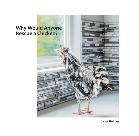 View Why Would Anyone Rescue a Chicken? by Janet Holmes