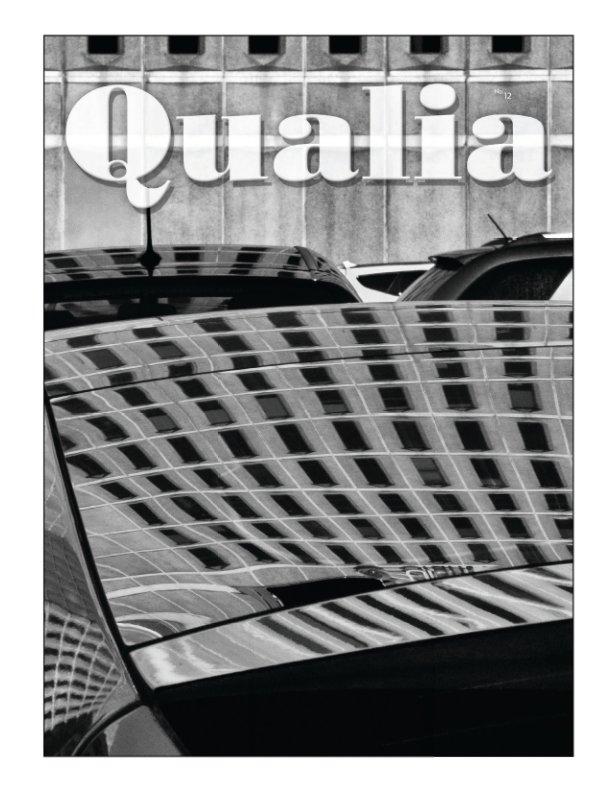Bekijk Qualia #12 op Paul Politis