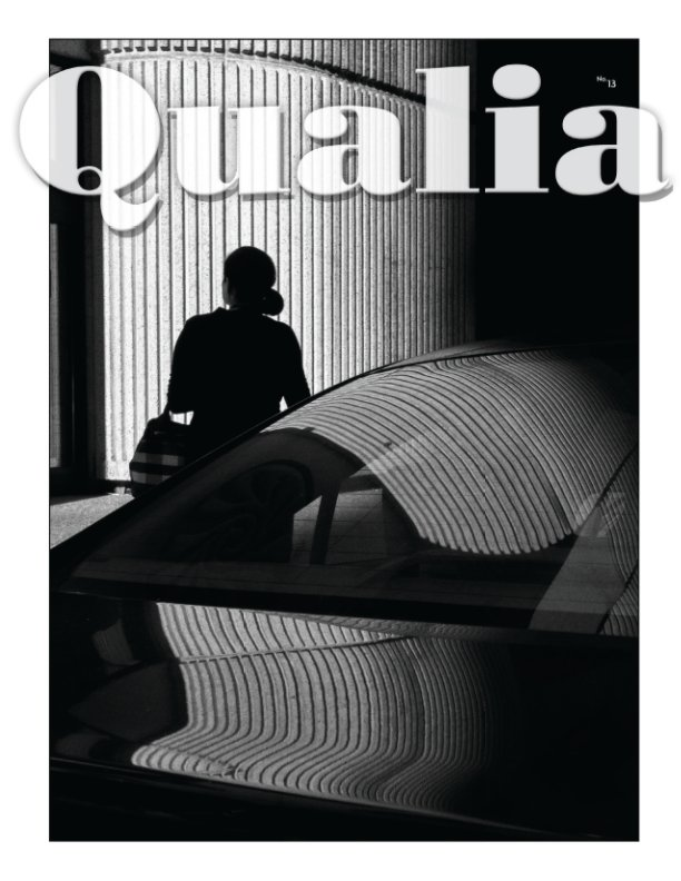 Bekijk Qualia #13 op Paul Politis