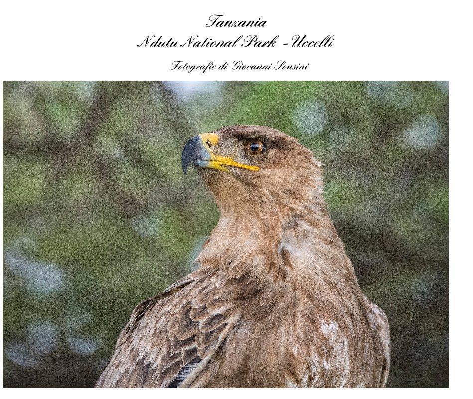 View Tanzania Ndutu National Park -Uccelli by Fotografie di Giovanni Sonsini