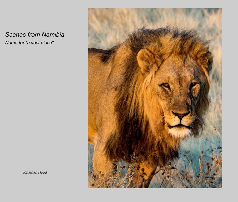 View Scenes from Namibia by Jonathan Hood