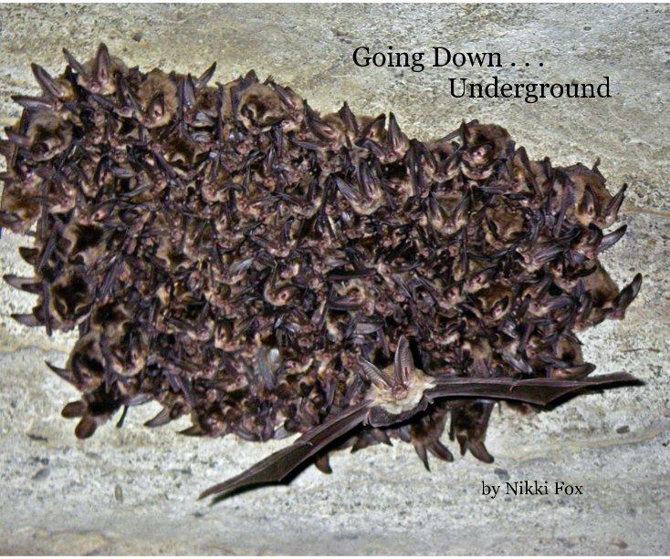 View Going Down . . . Underground by Nikki Fox