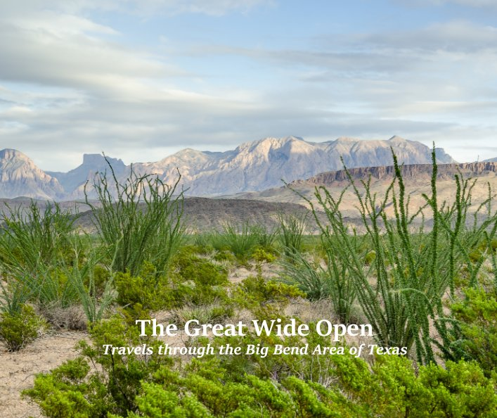 View The Great Wide Open by SuZan Alexander