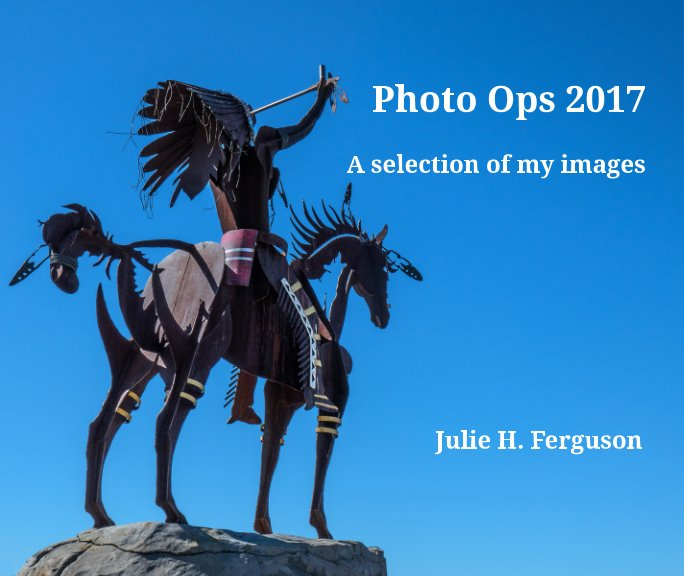 View Photo Ops 2017 by Julie H. Ferguson