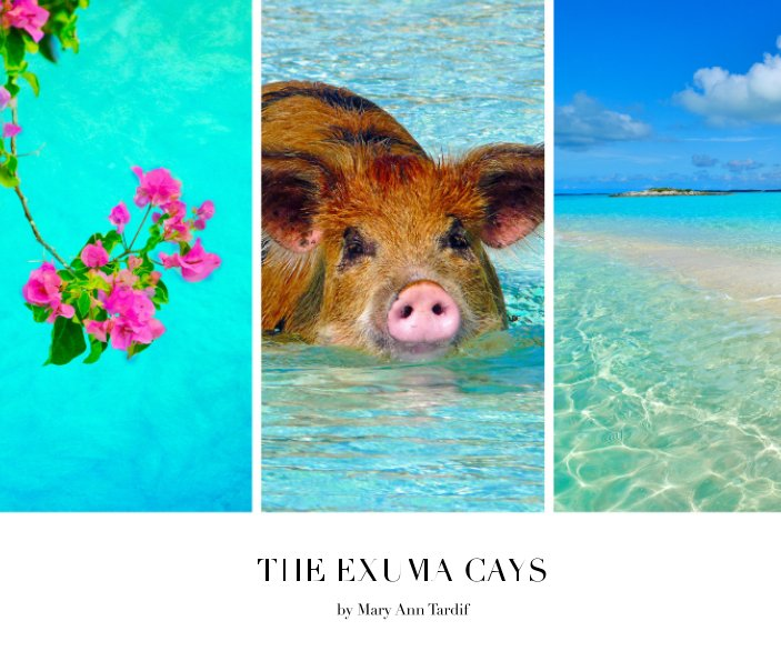 View The Exuma Cays by Mary Ann Tardif