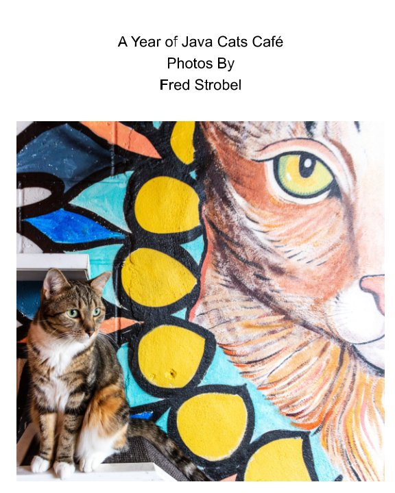 View A year of Javacats cafe by Fred Strobel