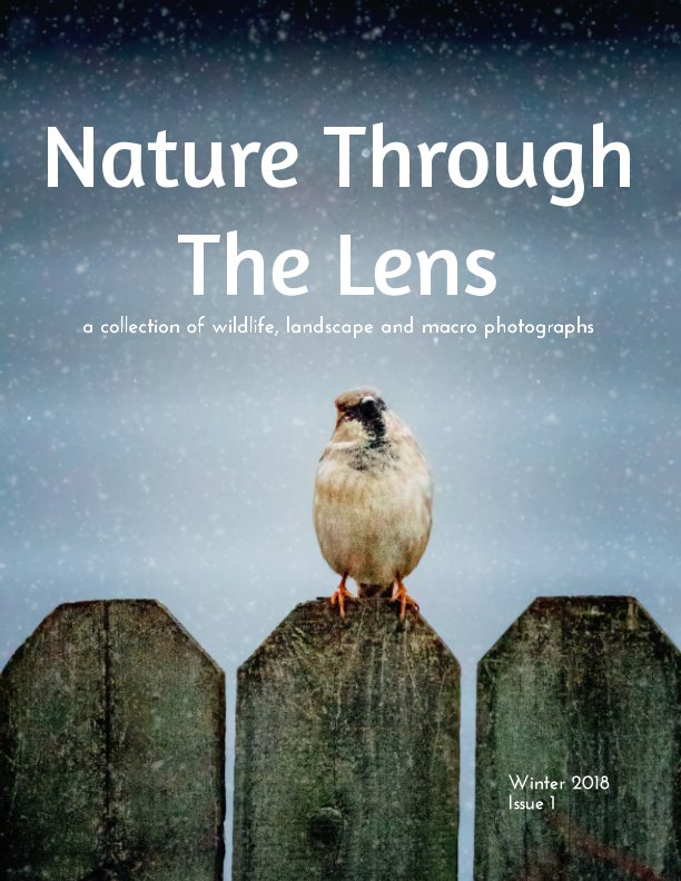 View Nature Through The Lens by Jessica Nelson