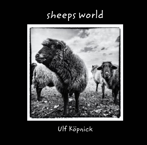 View sheeps world by Ulf Köpnick