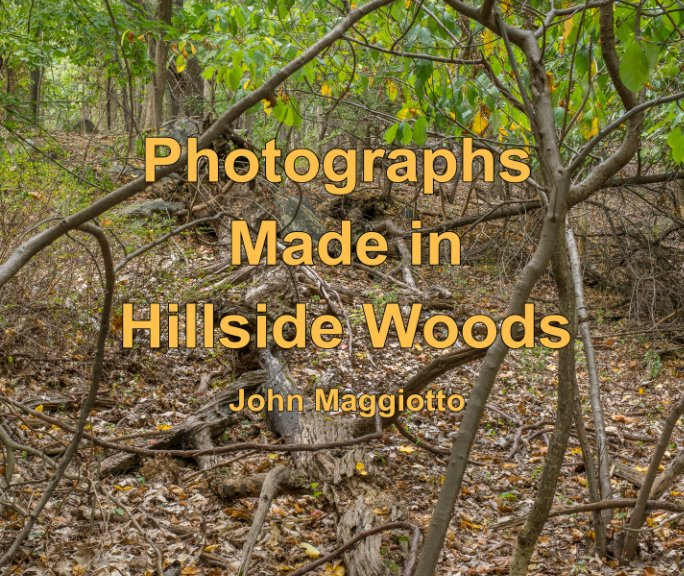 View Photographs Made in Hillside Woods by John Maggiotto