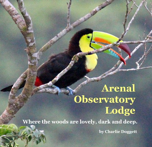 View Arenal Observatory Lodge by Charlie Doggett