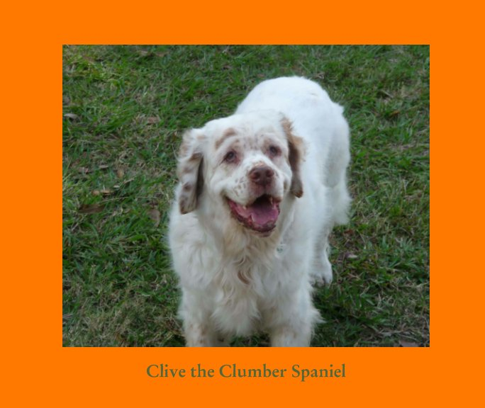 View CLIVE The Clumber Spaniel by Charles and Norah Lovell