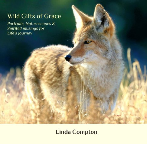 View Wild Gifts of Grace: by Linda Compton