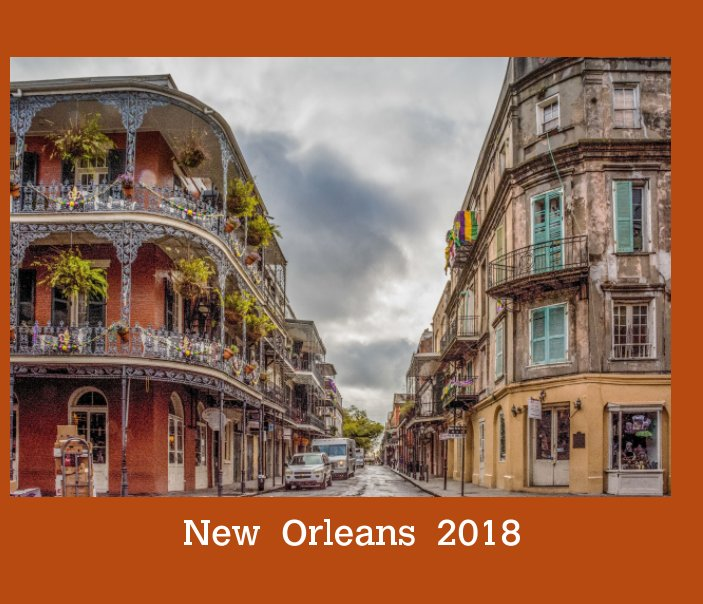 View New  Orleans    2018 by Faye  Sheffield