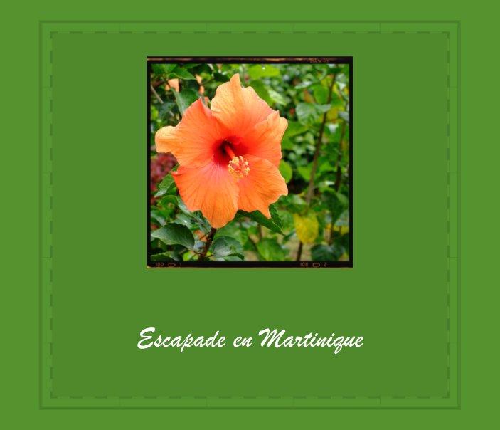 View Escapade en Martinique by Patrick JACOULET