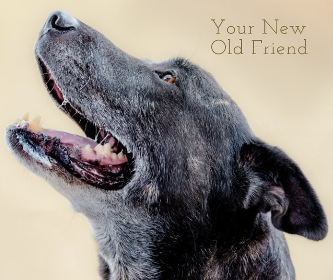 View Your New Old Friend by Gabe O'Neal