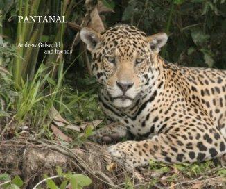 PANTANAL - photo book