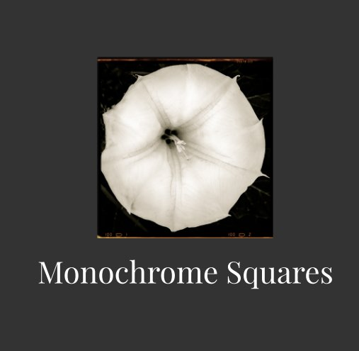 View Monochrome Squares by SuZan Alexander