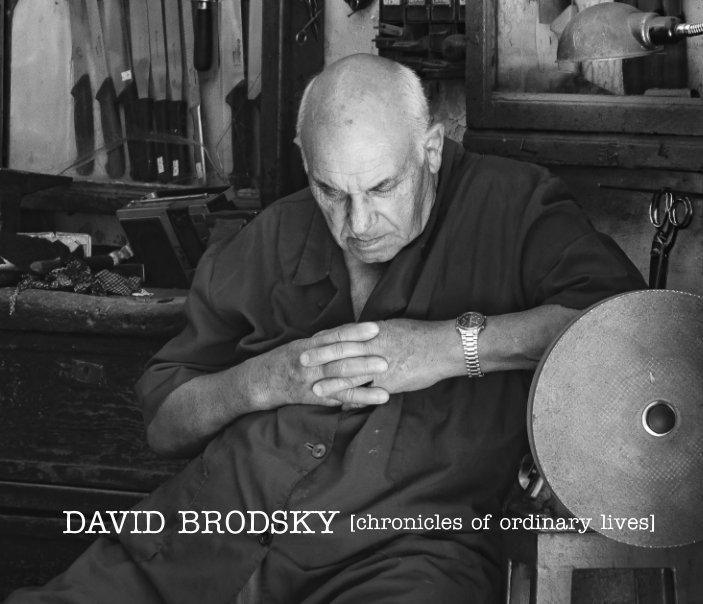 View David Brodsky [chronicles of ordinary lives] by David Brodsky