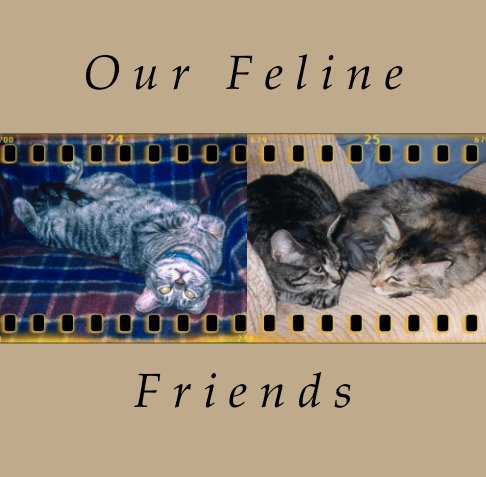 View Our Feline Friends by Deborah H. Olander