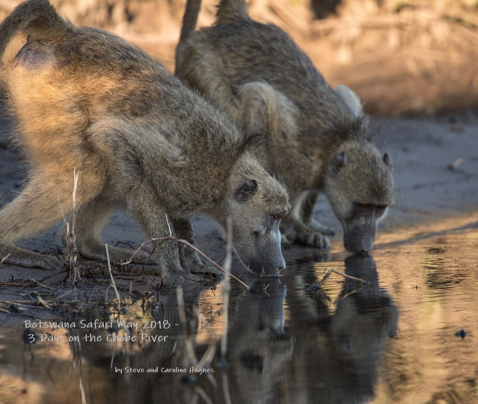 View Botswana Safari May 2018 - 3 Days on the Chobe River by Steve and Caroline Hughes