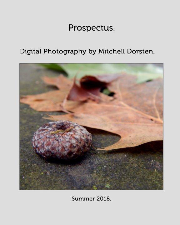 View Digital Photo and Design Portfolio by Mitchell Dorsten
