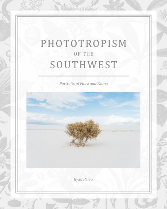 View Phototropism of the Southwest by Ryan Parra