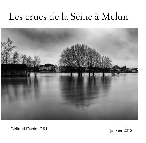 Visualizza Les crues de la Seine à Melun di Janvier 2018