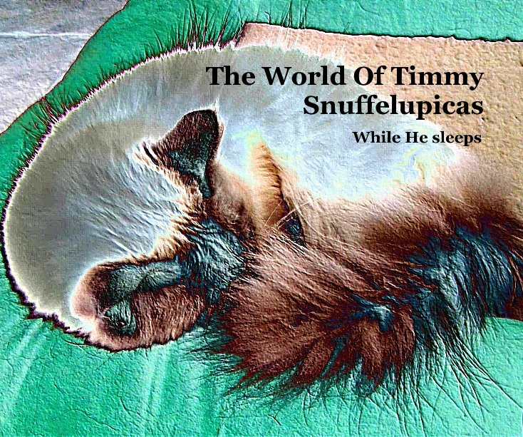 View The World Of Timmy Snuffelupicas by Lydia Braam