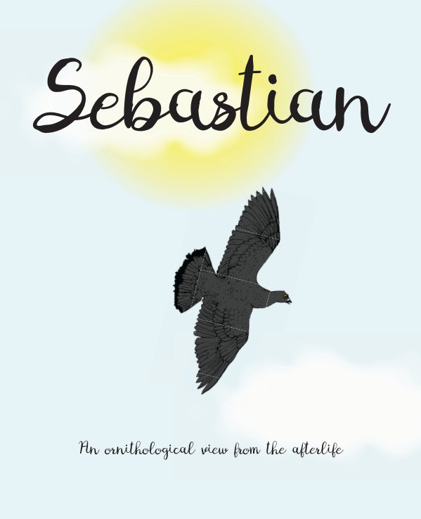 View Sebastian - hardcover by Ross Addison