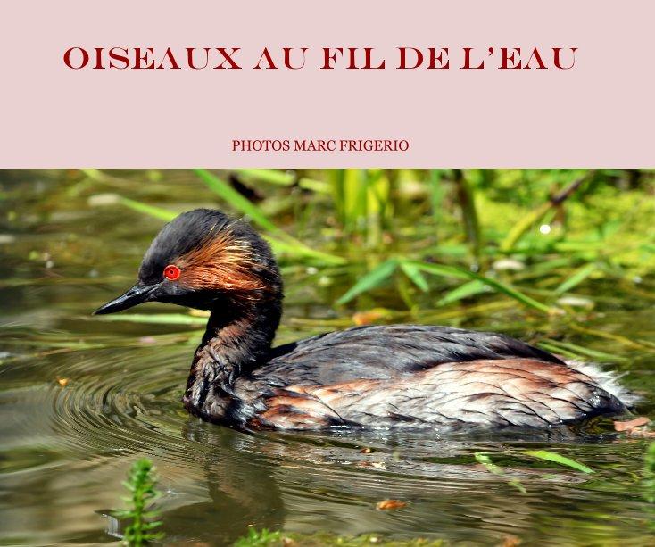 Visualizza Oiseaux au fil de l'eau photos marc frigerio di PHOTOS MARC FRIGERIO