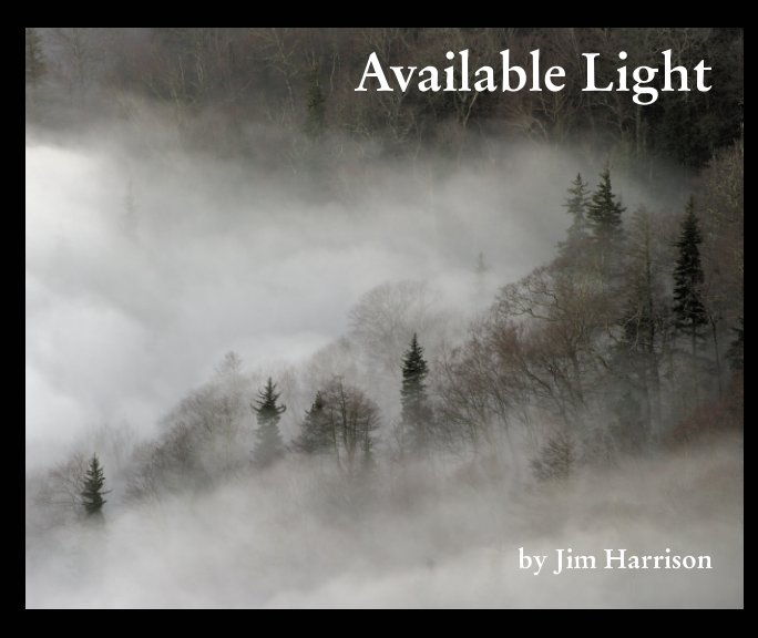 View Available Light by Jim Harrison