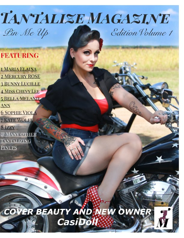 View Pin Me Up Edition Volume 1 by Casandra Payne
