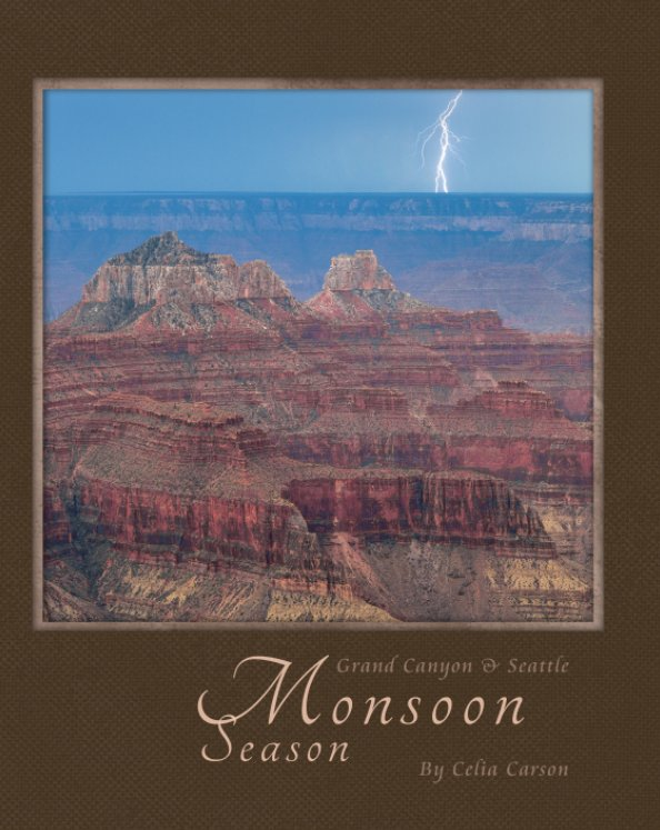 View Grand Canyon by Celia Carson