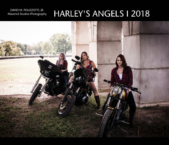View Harley's Angels  I  2018 by David M. Polizzotti, Jr
