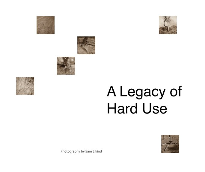 View A Legacy of Hard Use by Sam Elkind