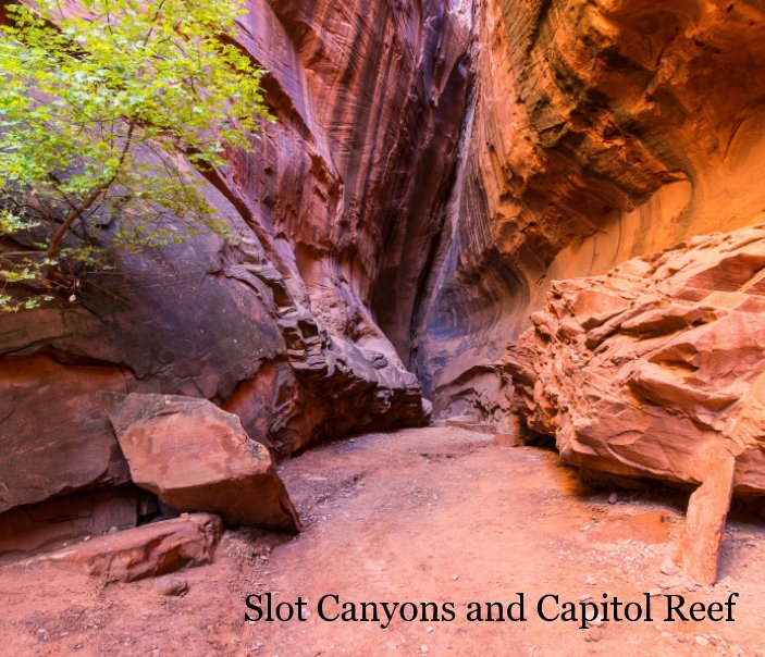 View Slot Canyons and Capitol Reef by Patrick St Onge