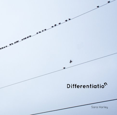 View Differentiation by Sara Harley