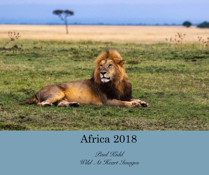 View Africa 2018 by Paul Kidd Wild At Heart Images