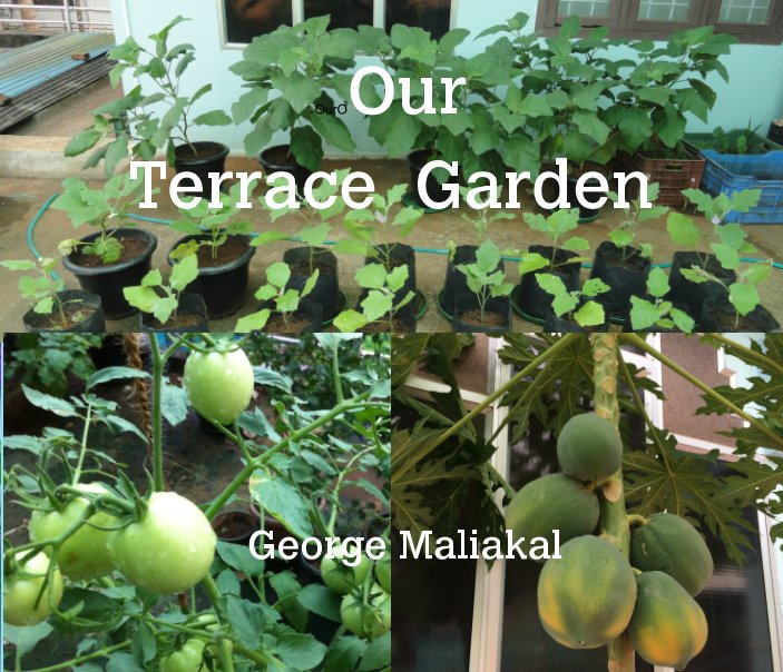 View Our Terrace Garden by George Maliakal