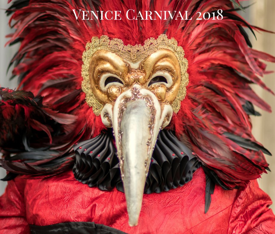 View Venice Carnival 2018 by Tim Swart