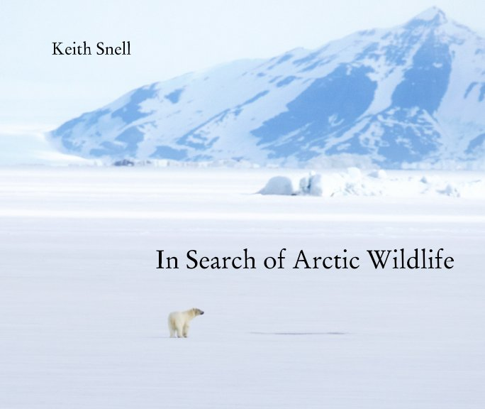 View In Search of Arctic Wildlife by Keith Snell