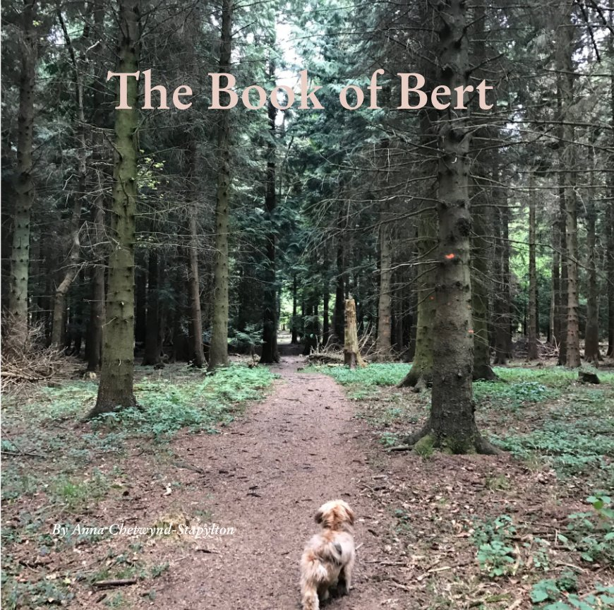 View The Book of Bert by Anna Chetwynd-Stapylton