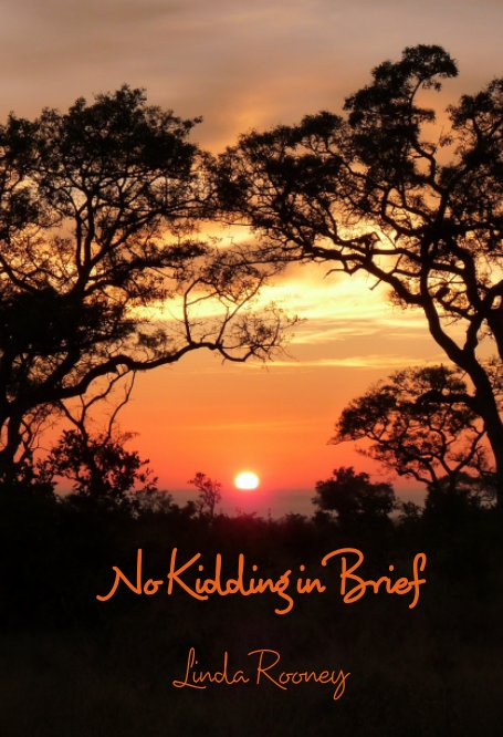 View No Kidding In Brief by Linda Rooney