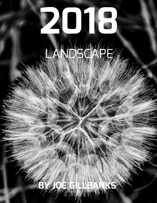Ver Landscapes 2018 por Joe Gillbanks