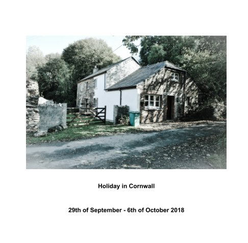 View Cornwall by Kelsey Campbell