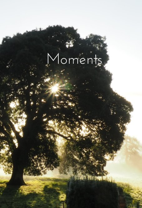 View Moments by Jennifer Cockcroft