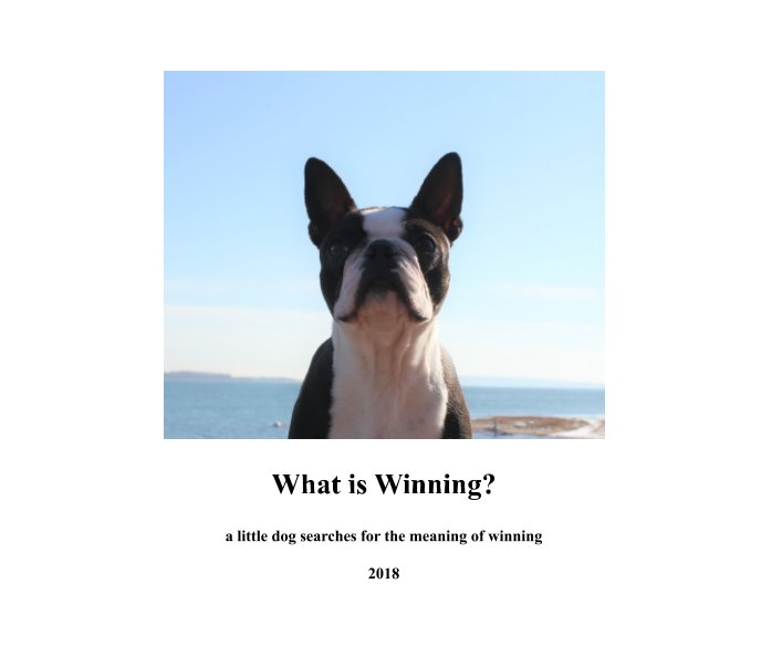 View What is Winning? by Mikethepup
